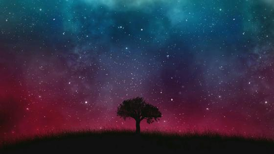 Lone tree under the starry sky - Fantasy art wallpaper