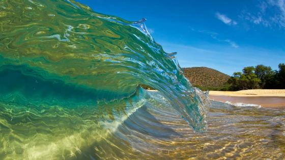 Perfect wave on the beach wallpaper