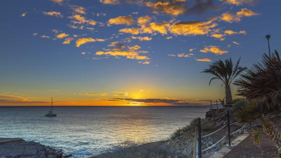 Sunset on the Playa Fanabe beach in Tenerife, Spain wallpaper