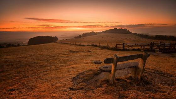Lonely bench in the field at the sunrise wallpaper
