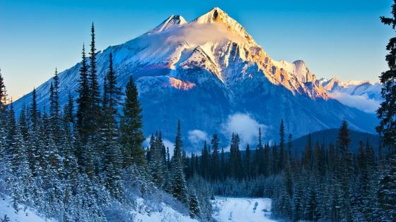 Snowy Canadian Rockies wallpaper