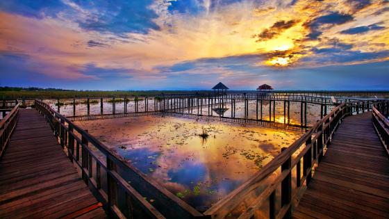 Beautiful sunset over the marsh - Khao Sam Roi Yot National Park wallpaper