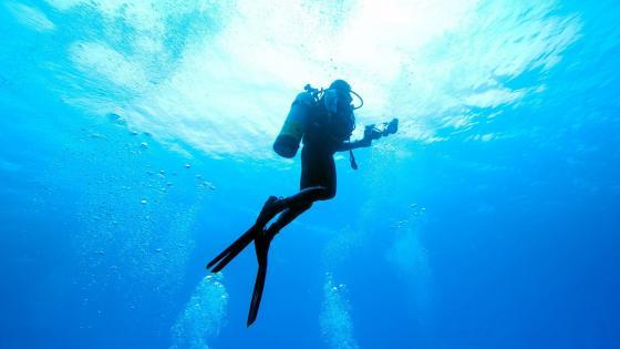 Scuba Diver wallpaper