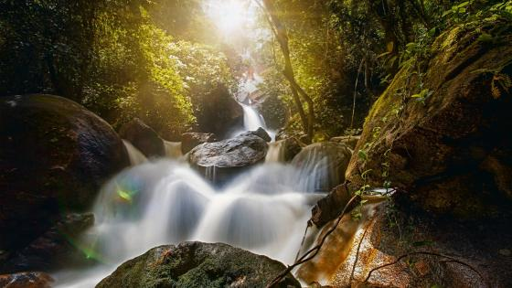 Waterfall Bridal Veil, Pernambuco, Brazil wallpaper