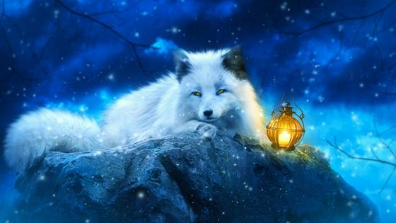 White fox art wallpaper