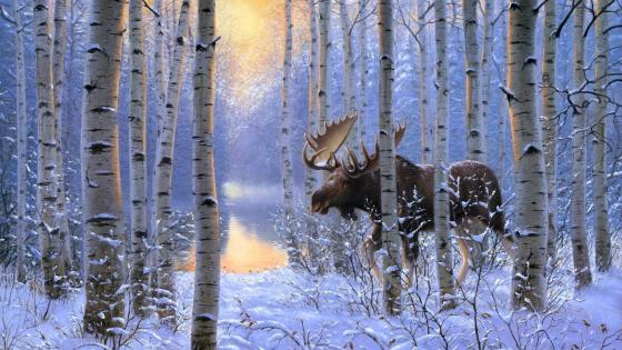 Moose in the snowy birch forest - Painting art wallpaper