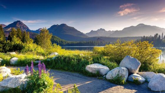 Strbske Pleso mountain lake - Slovakia wallpaper