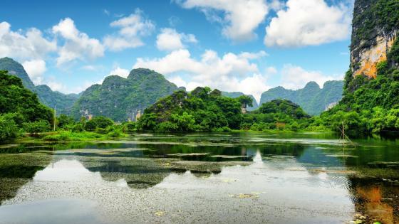 Cuc Phuong National Park - Ninh Bình, Vietnam wallpaper