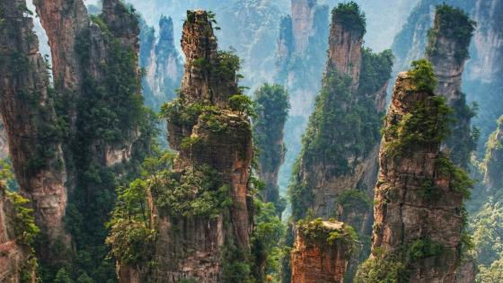 Tianzi Mountain - Zhangjiajie National Forest Park, China wallpaper
