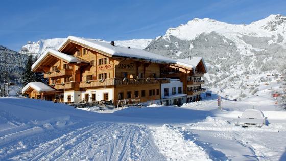 Snowy Aspen - Switzerland wallpaper