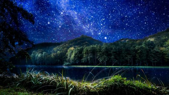 Starry night sky above the lake wallpaper