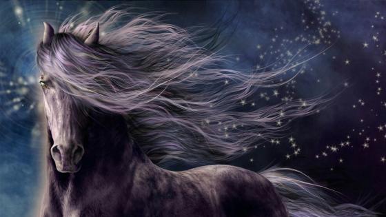 Dreamy horse with stars - Fantasy art wallpaper