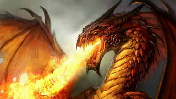 Firebreathing Dragon  wallpaper