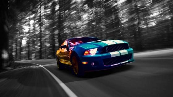 Shelby Mustang wallpaper