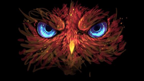 Owl graphics wallpaper