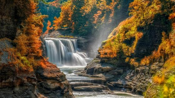 Autumn in the Letchworth State Park - Castile, New York wallpaper