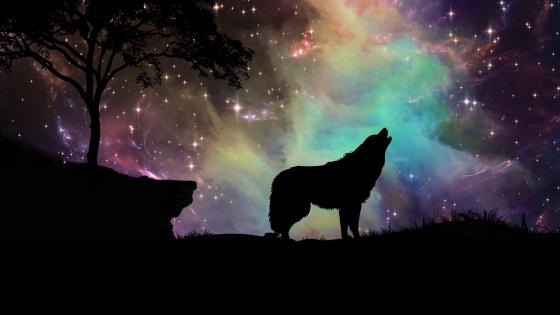 Wolf howling - Fantasy art wallpaper
