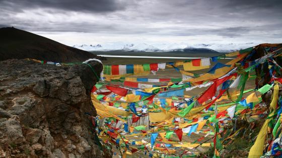 Wind horse flag in Tibet wallpaper