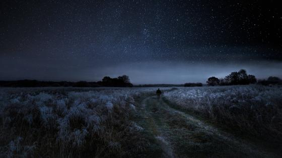 Rural frosty pathway under the starry sky wallpaper