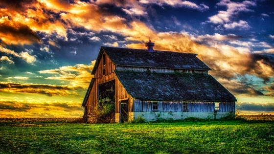 Abandoned old barn in the field wallpaper