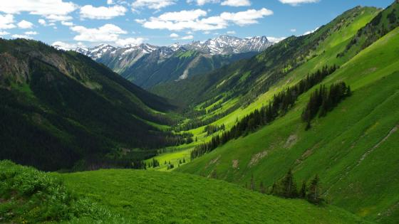 Barkley Valley - British Columbia, Canada wallpaper