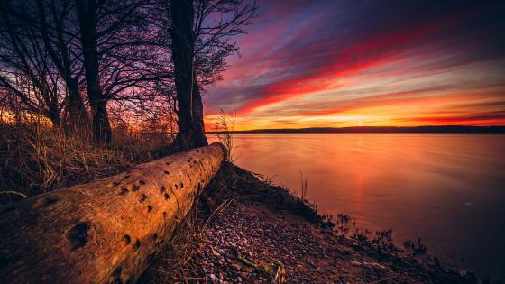 Sunset at Curonian Lagoon, Kursiu Nerija National Park, Lithuania wallpaper