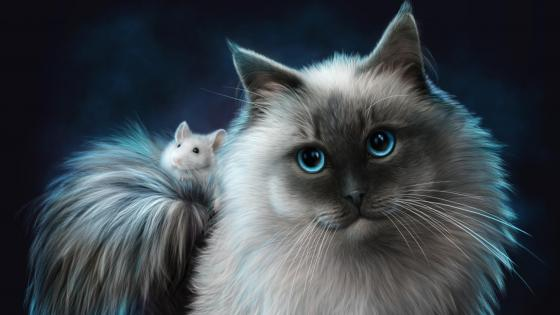 Cat and mouse illustration  wallpaper