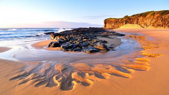 Sunny beach - Australia wallpaper