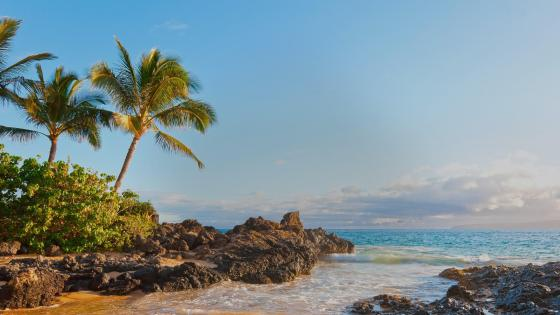 Makena Cove beach - Maui, Hawaii  wallpaper