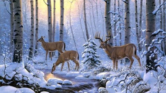 Whitetail deer in snow - Painting art wallpaper