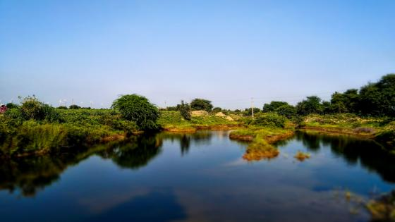 Pond in Pansada (India) wallpaper