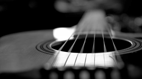 Acoustic guitar - Monochrome photography wallpaper