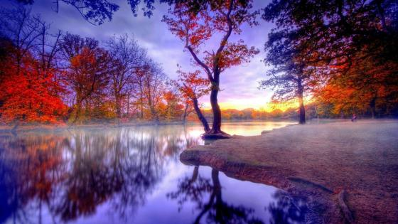 Autumn reflection wallpaper