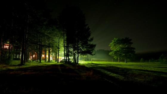 Illuminating house in the dark forest wallpaper