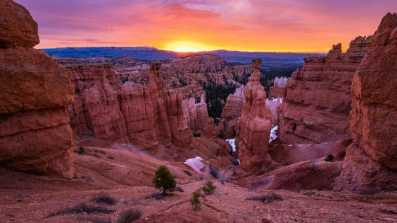 Sunset in Bryce Canyon National Park wallpaper