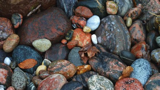 Colorful gravel wallpaper