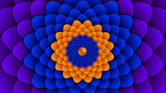 Hypnotic flower artwork wallpaper