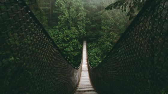 Lynn Canyon Suspension Bridge - British Columbia, Canada wallpaper