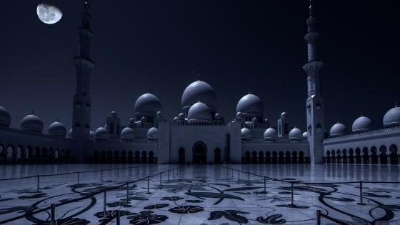Sheikh Zayed Grand Mosque at night - Abu Dhabi, United Arab Emirates wallpaper