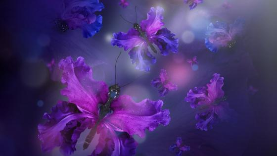 Purple iris butterfly abstract fantasy art wallpaper