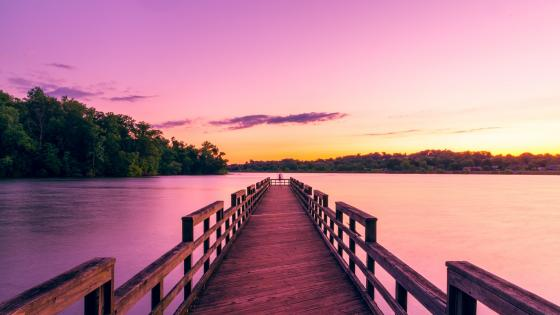 Rat Branch Fishing Pier - Watauga Reservoir wallpaper