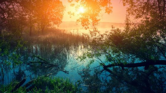 Inspiring sunrise wallpaper
