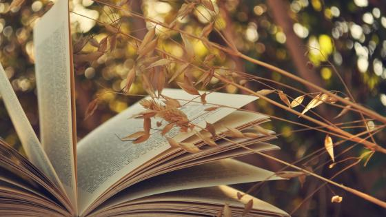 Open book wallpaper