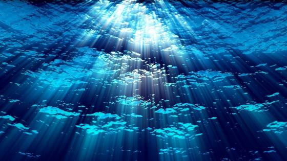 Underwater sun rays wallpaper