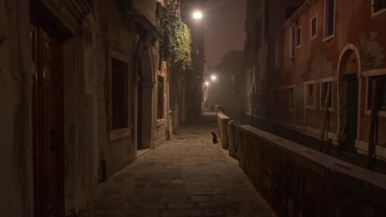 Venice at night wallpaper