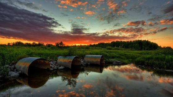 Wetland sunset wallpaper