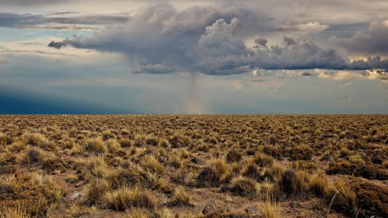 Desert before the rain wallpaper