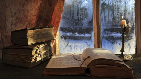 Old books in the window wallpaper