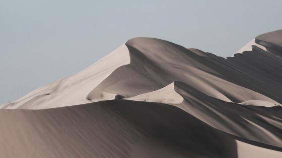 Desert artwork wallpaper