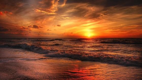 Glorious red and orange sunset at the North Sea wallpaper